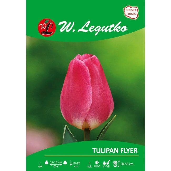 Tulipan Flyer