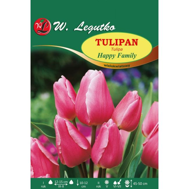 Tulipan Happy Family