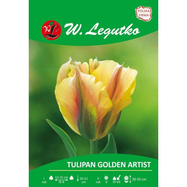 Tulipan Golden Artist