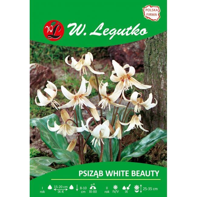 Psiząb - White Beauty