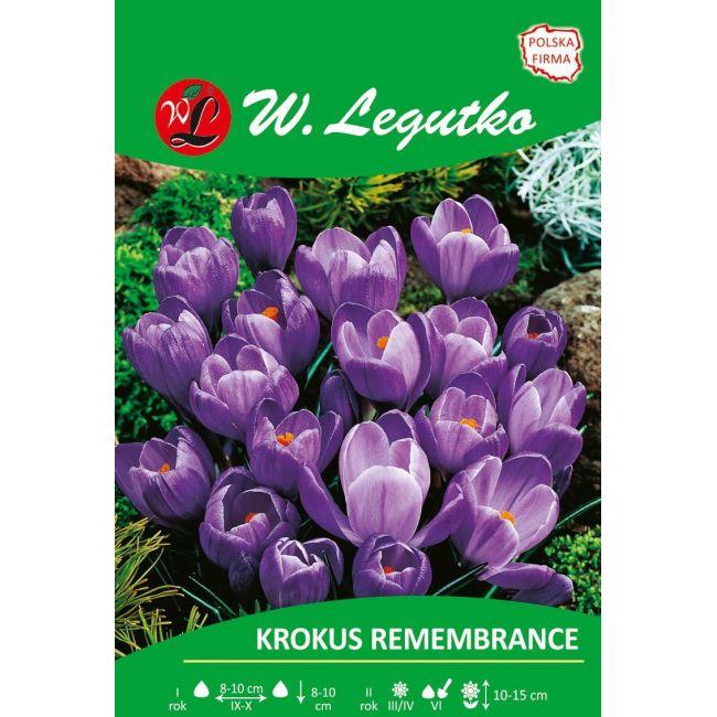 Krokus Vernus Remembrance