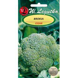 Brokuł - Cezar