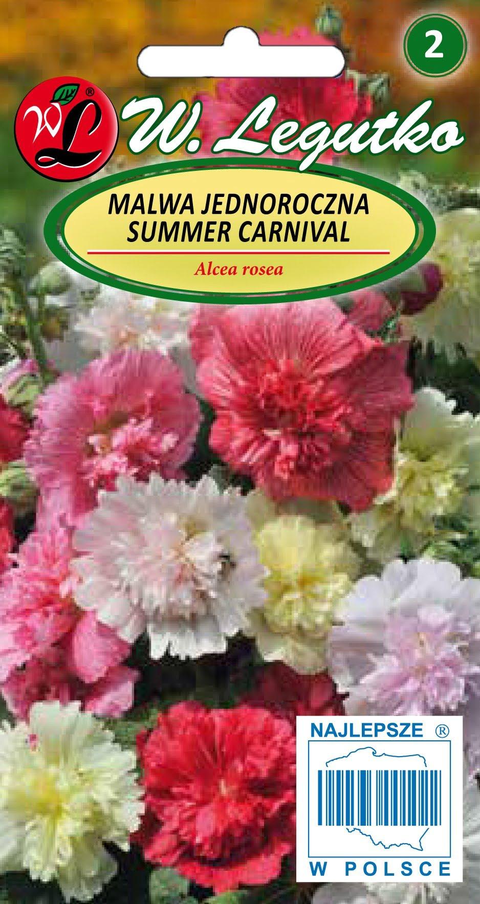 Malwa Jednoroczna Summer Carnival Mieszanka W Legutko E Sklep