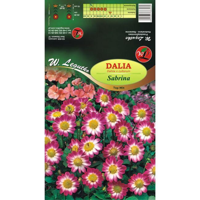 Dalia Top Mix Sabrina