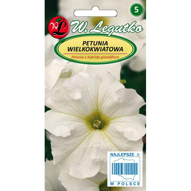 Petunia ogrodowa biała
