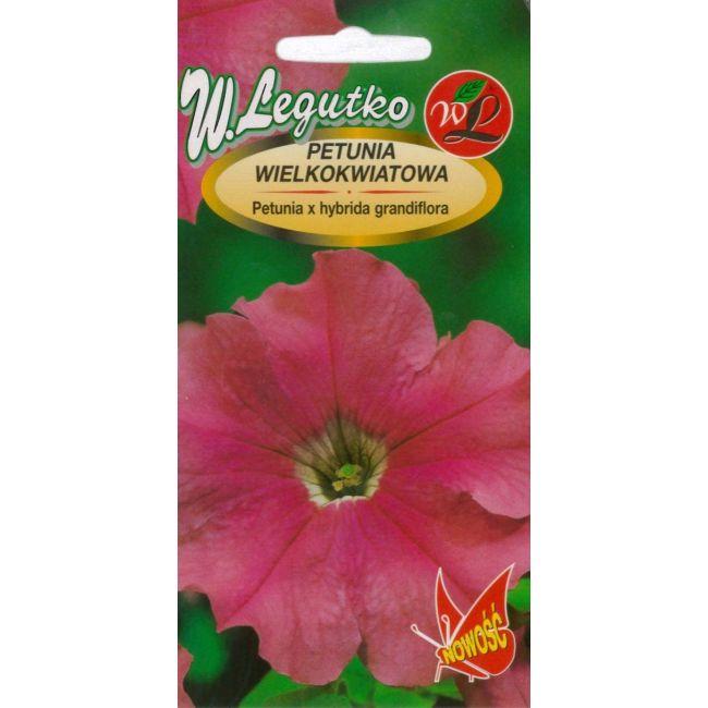 Petunia ogrodowa różowa