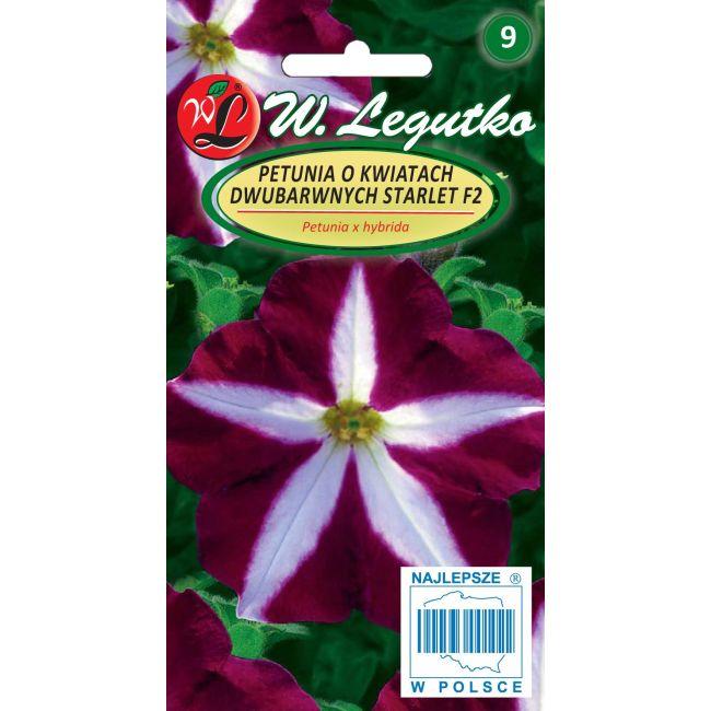 Petunia o pędach zwisających, kwiaty dwubarwne, Starlet F2- amarantowofioletowa z białą gwiazdą