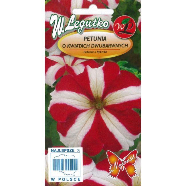 Petunia o pędach zwisających, kwiaty dwubarwne, Star Red- czerwona z białą gwiazdą