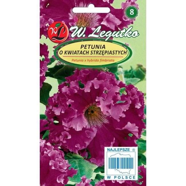 Petunia o pędach zwisających, kwiaty postrzępione- amarantowofioletowa