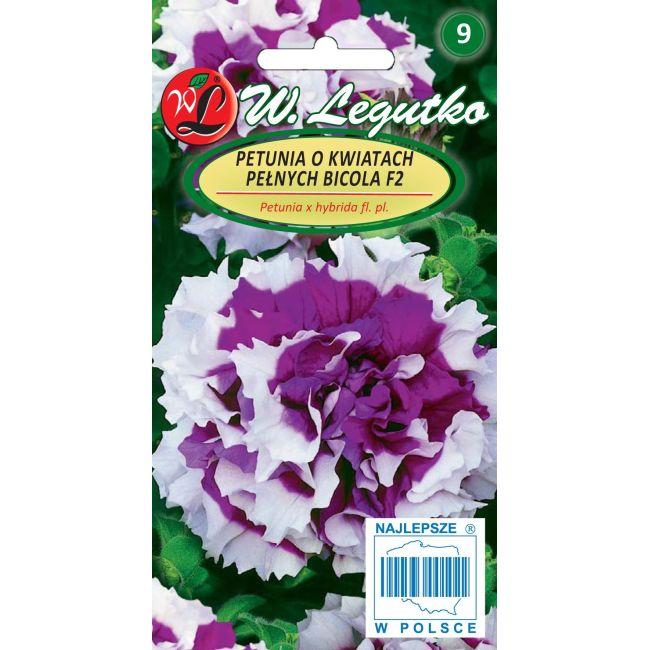 Petunia o pędach zwisających, mieszanka o kwiatach pełnych, Bicola F2- fioletowoniebieska z białym obrzeżeniem