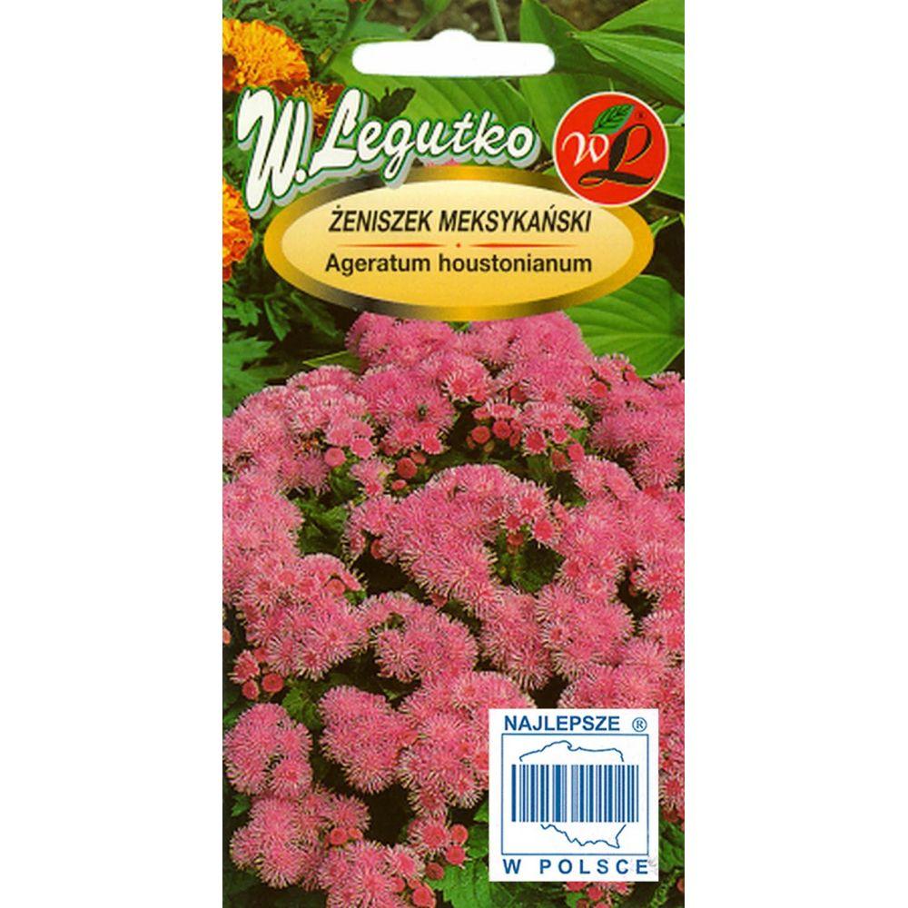 Żeniszek meksykański - różowy