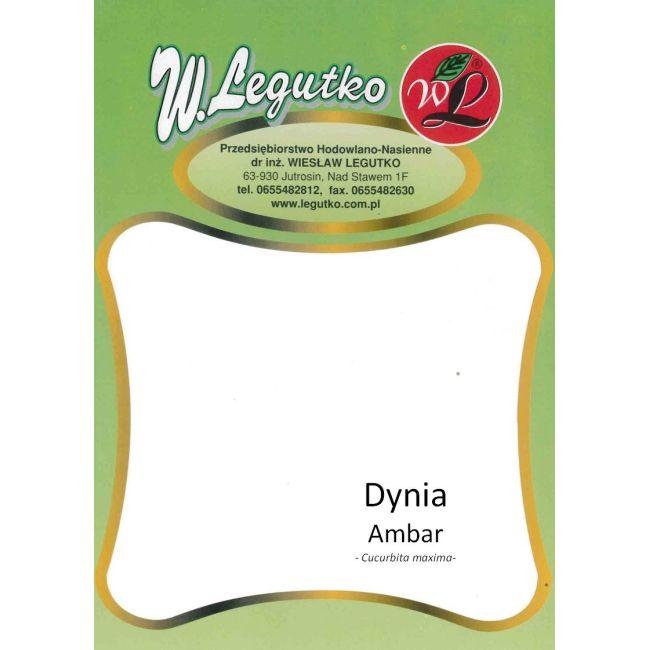 Dynia - Ambar - 100g