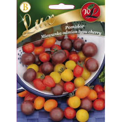 Pomidor-mieszanka odmian typu Cherry