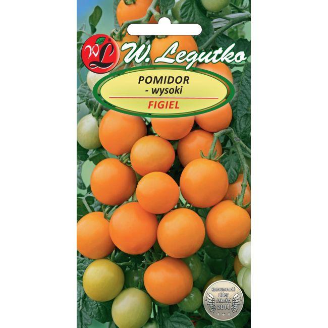 Pomidor wysoki Figiel