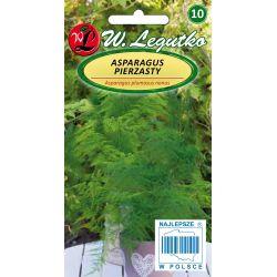 Asparagus pierzasty