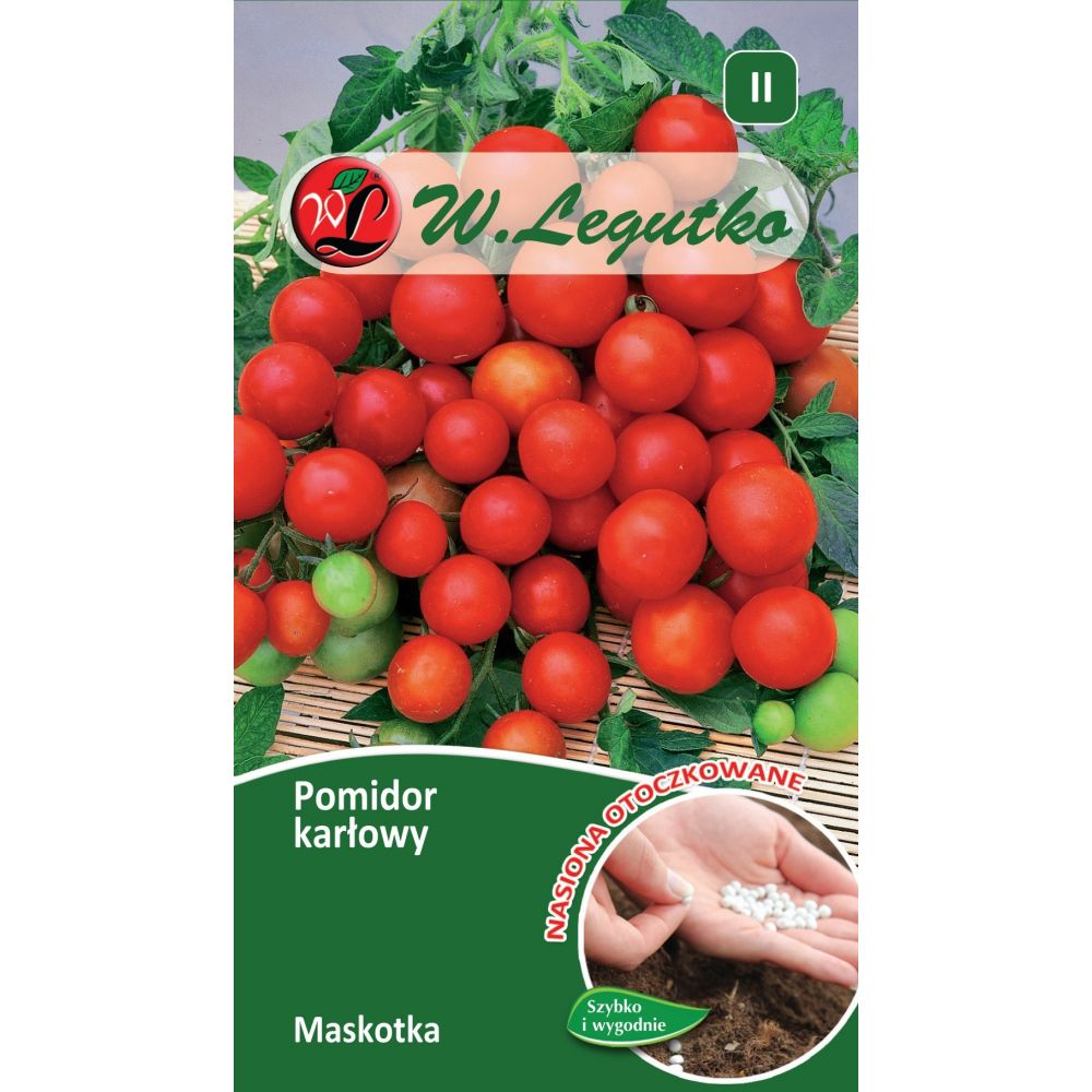 Pomidor karłowy - Maskotka - 100szt. nasion