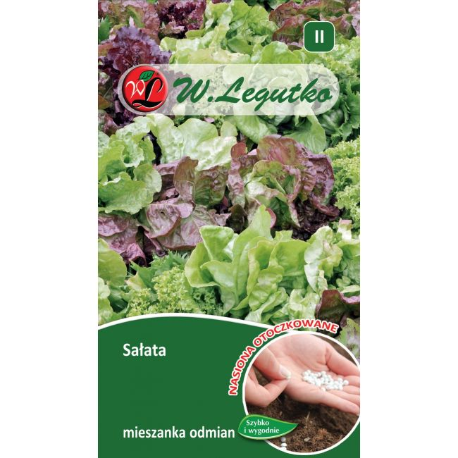 Sałata - mieszanka odmian - 250szt. nasion