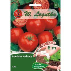 Pomidor gruntowy karłowy wiotkołodygowy - Alka - taśma 6m