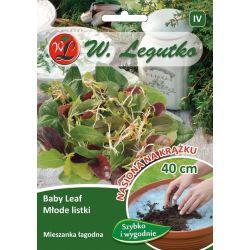 Baby Leaf - Młode Listki - mieszanka łagodna - krążek - 1szt.