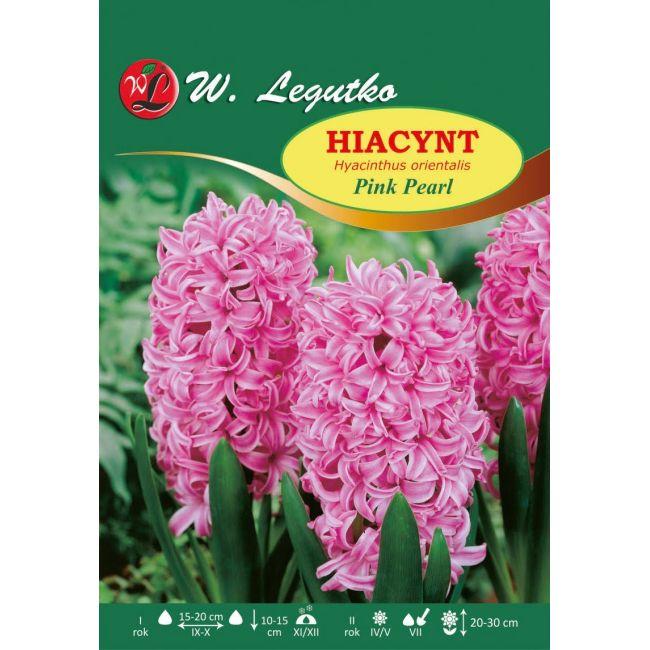 Hiacynt Pink Pearl