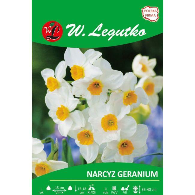 Narcyz Geranium