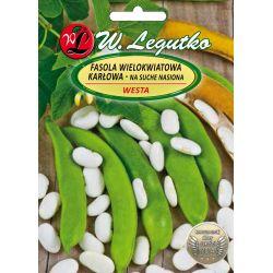 Fasola - Westa - nasiona białe
