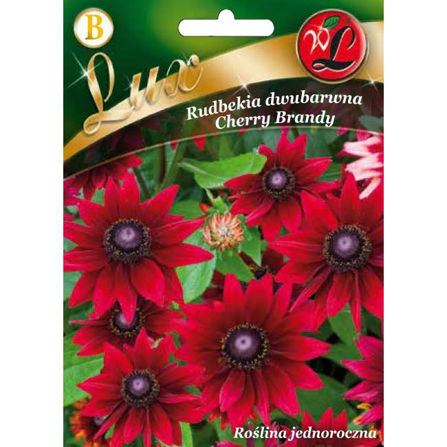Rudbekia Cherry Brandy