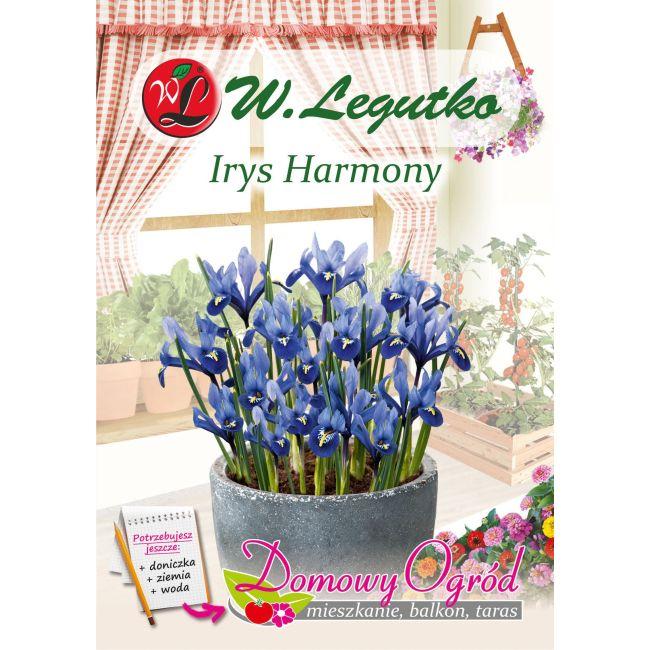 Irys - Harmony - 10 szt.