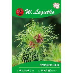 Czosnek - Hair - fioletowo-zielony