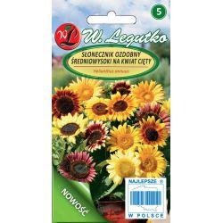 Słonecznik średnio wysoki pojedynczy - mic na kwiat cięty - NOWOŚĆ
