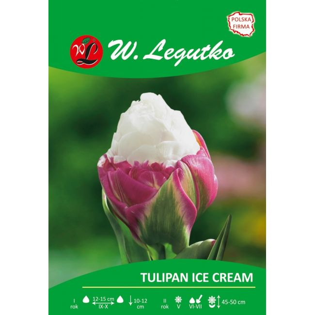 Tulipan Ice Cream