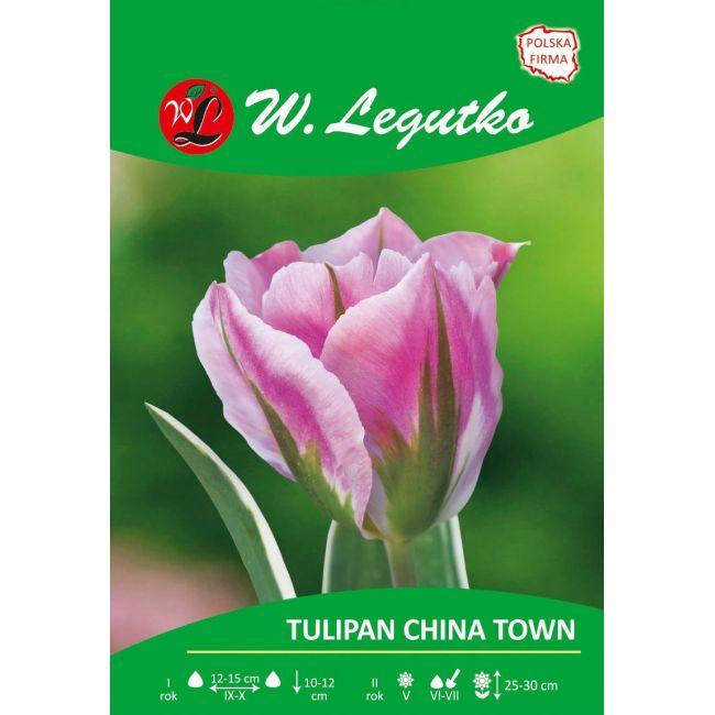 Tulipan China Town