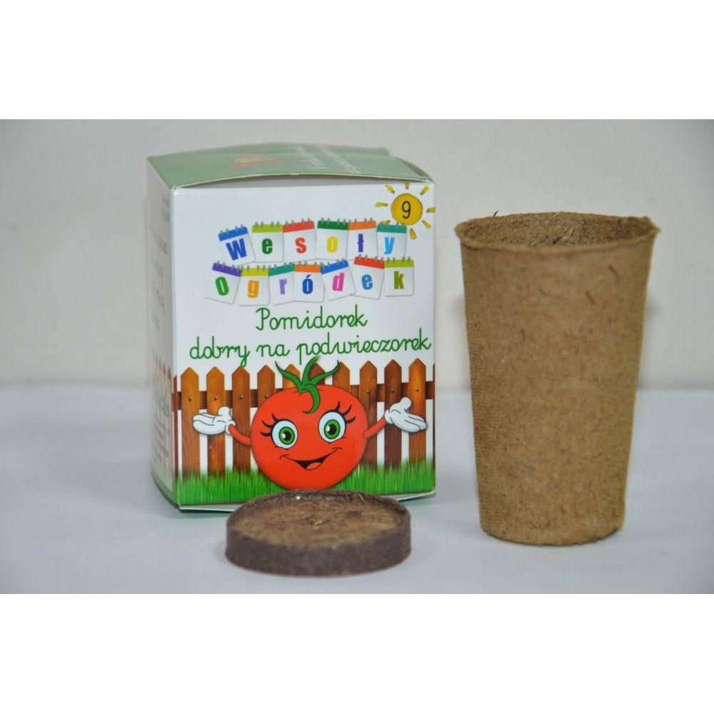 Zestaw: torfowy krążek i doniczka, nasiona