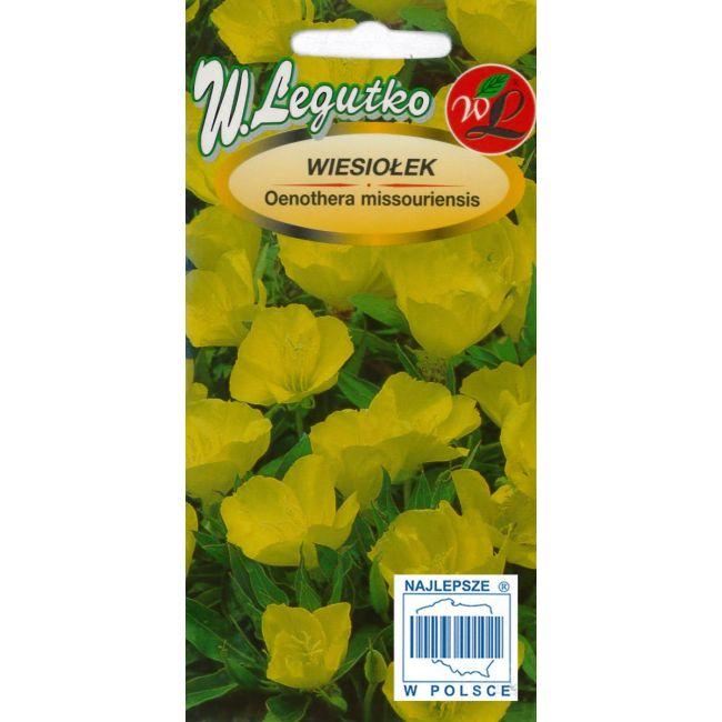 Wiesiołek missouryjski - żółty