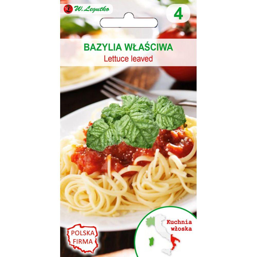 Kuchnie świata - Bazylia właściwa Lettuce leaved