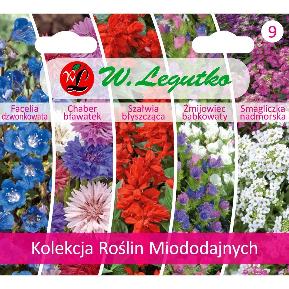 Kolekcja Roślin Miododajnych