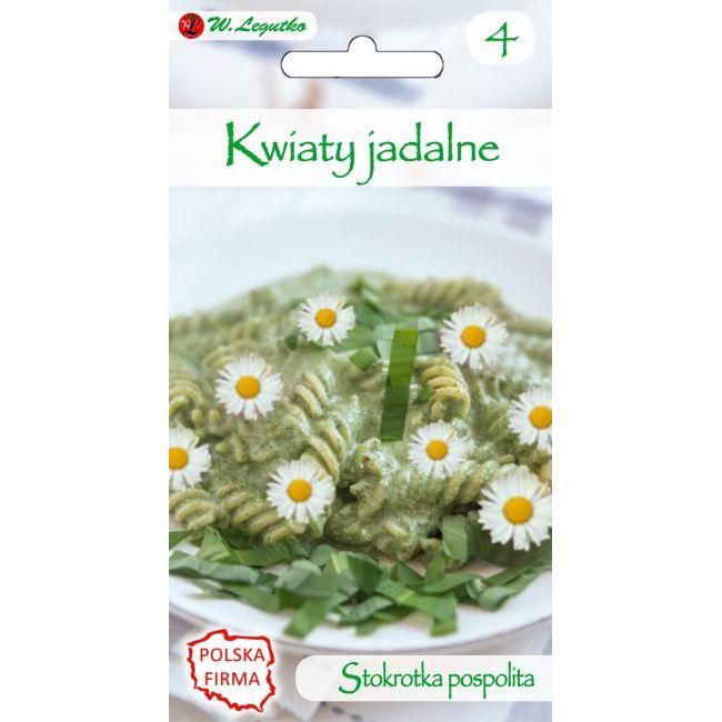 Kwiaty jadalne - Stokrotka pospolita