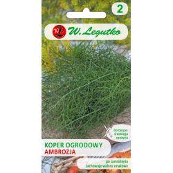 Koper ogrodowy/Anethum graveolens/Ambrozja/-/5.00