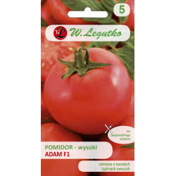 Pomidor gruntowy Adam