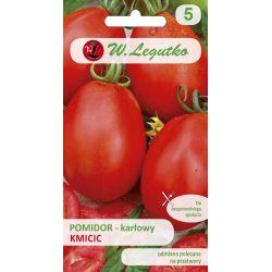 Pomidor gruntowy karłowy wiotkołodygowy - Kmicic