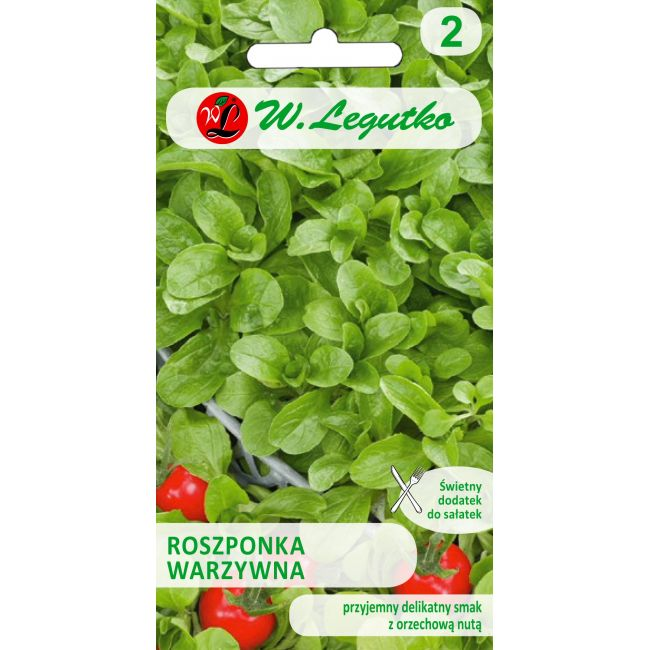 Roszponka warzywna - Verte de Cambari