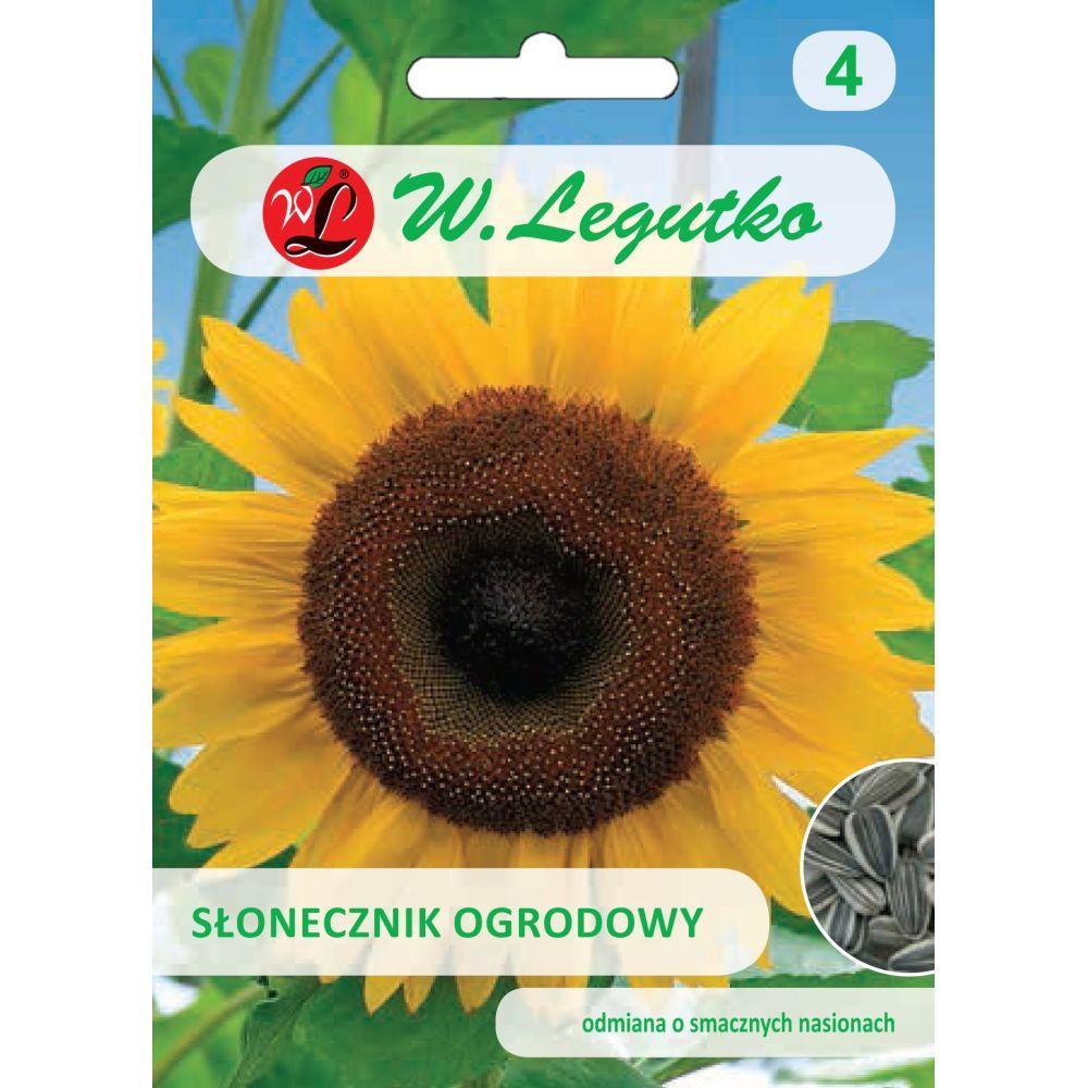 Słonecznik ogrodowy, nasiona paskowane/Helianthus annuus/-/-/20.00