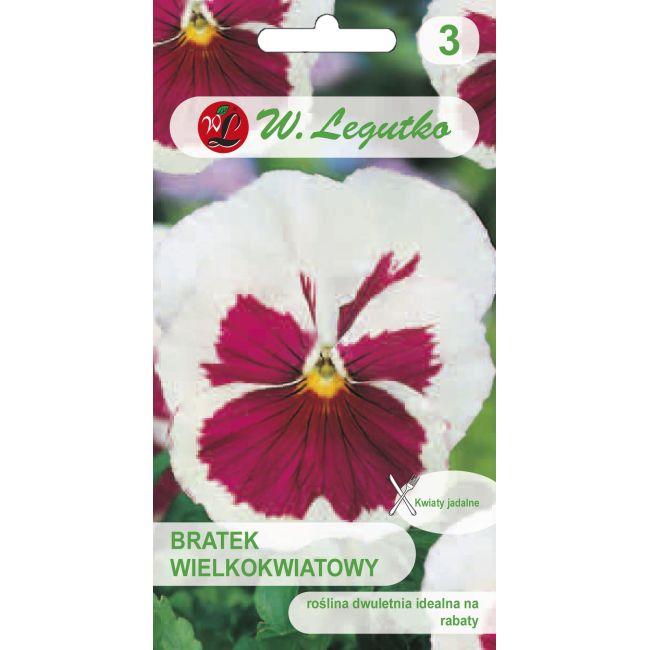 Bratek Szwajcarski wielkokwiatowy - White/Pink eye