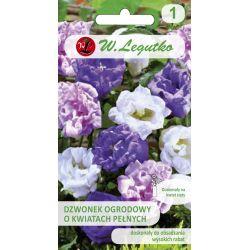 Dzwonek ogrodowy - mieszanka o kwiatach pełnych
