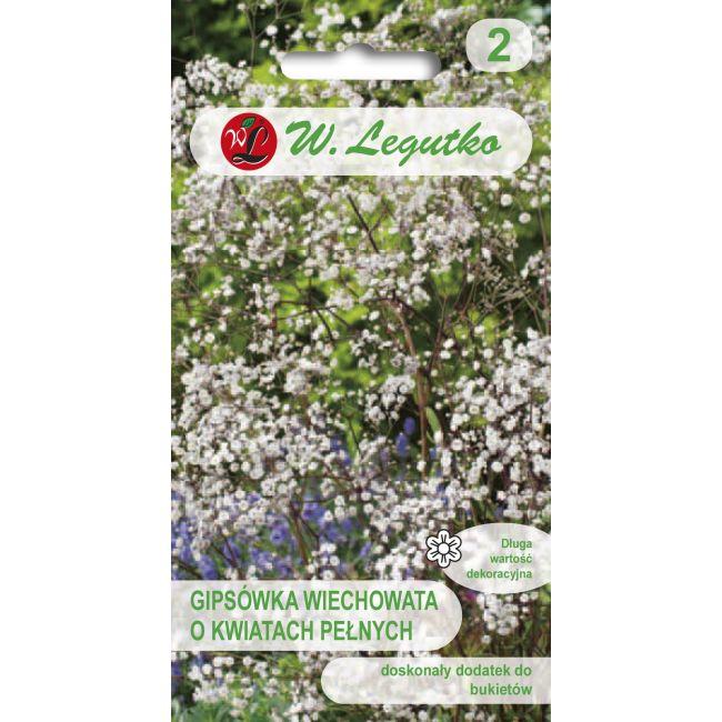 Gipsówka wiechowata o kwiatach pełnych - biała