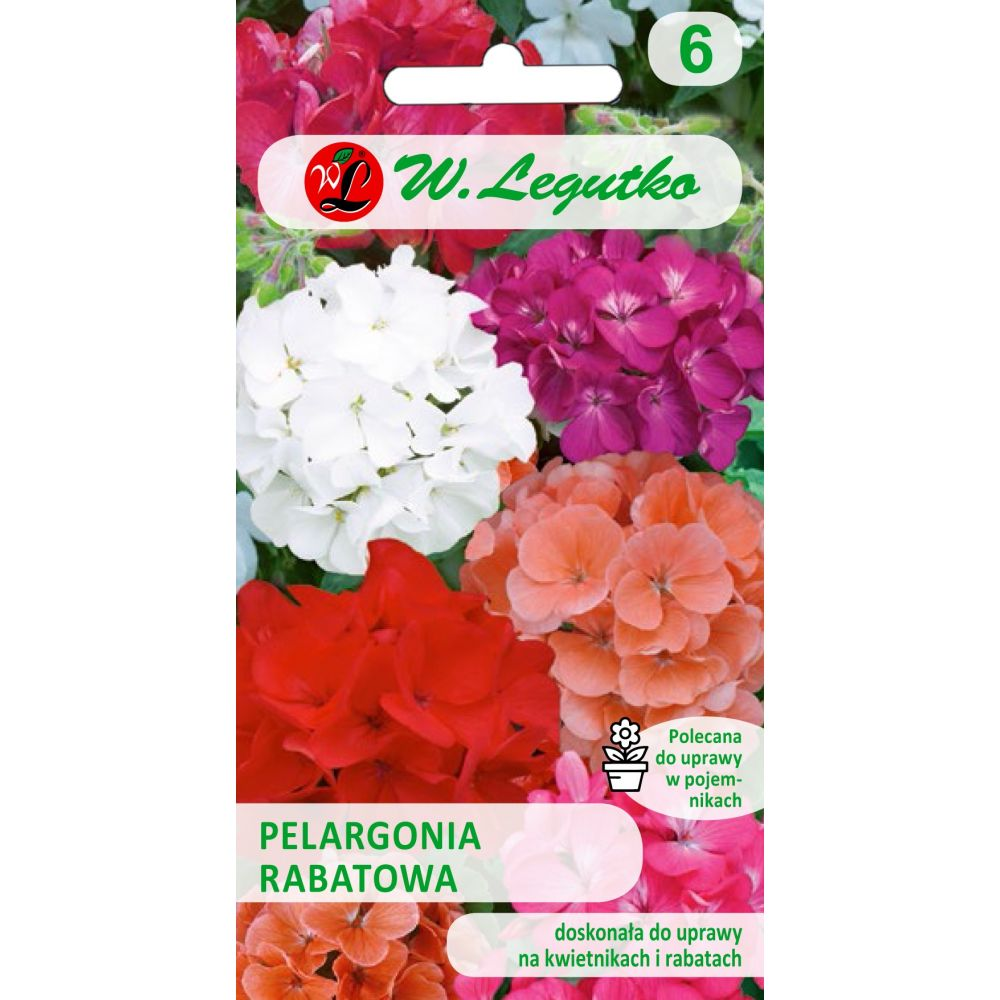 Pelargonia rabatowa- mieszanka F2