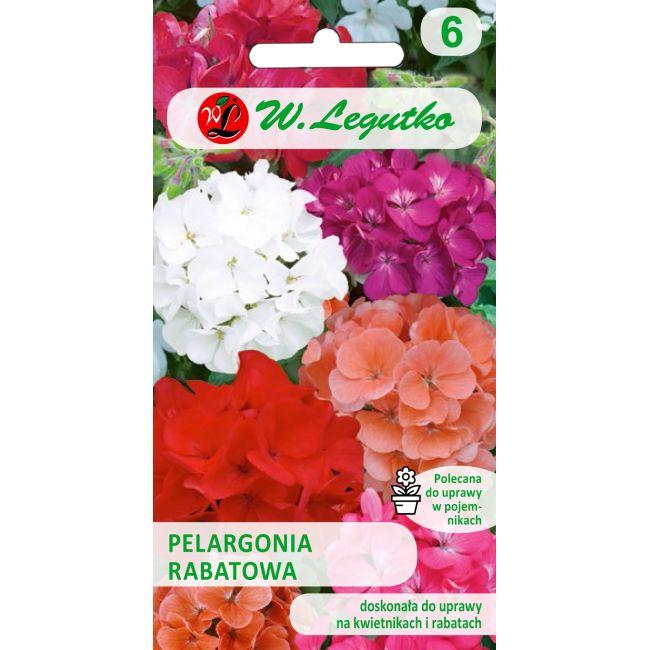Pelargonia rabatowa - mieszanka F2