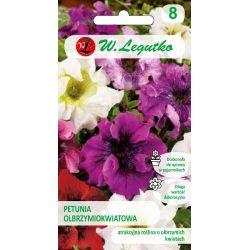 Petunia ogrodowa Superbissima mieszanka