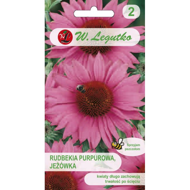 Rudbekia purpurowa - różowa