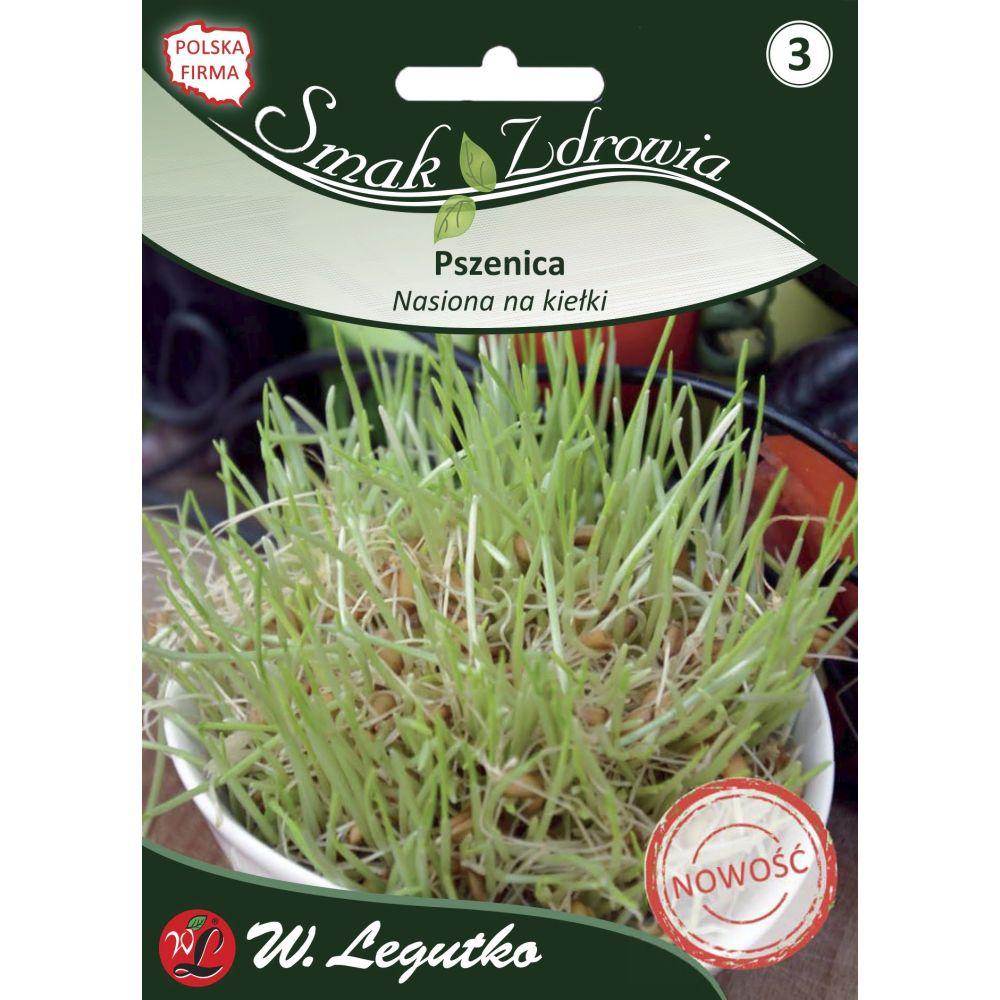 Nasiona na kiełki - pszenica 50.00 g